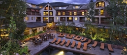 Luxury ski hotel
