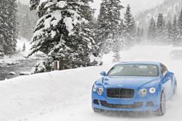 Best SNOW Luxury Auto - Bentley
