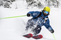 Vollkl M5 Skis